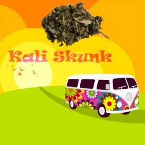 Kali Skunk - Legal Bud